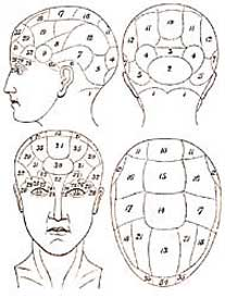 phrenology 1 sm 5 Interesting Articles for You: Your Occasional Reader