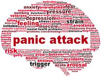 Panic Attack Brain